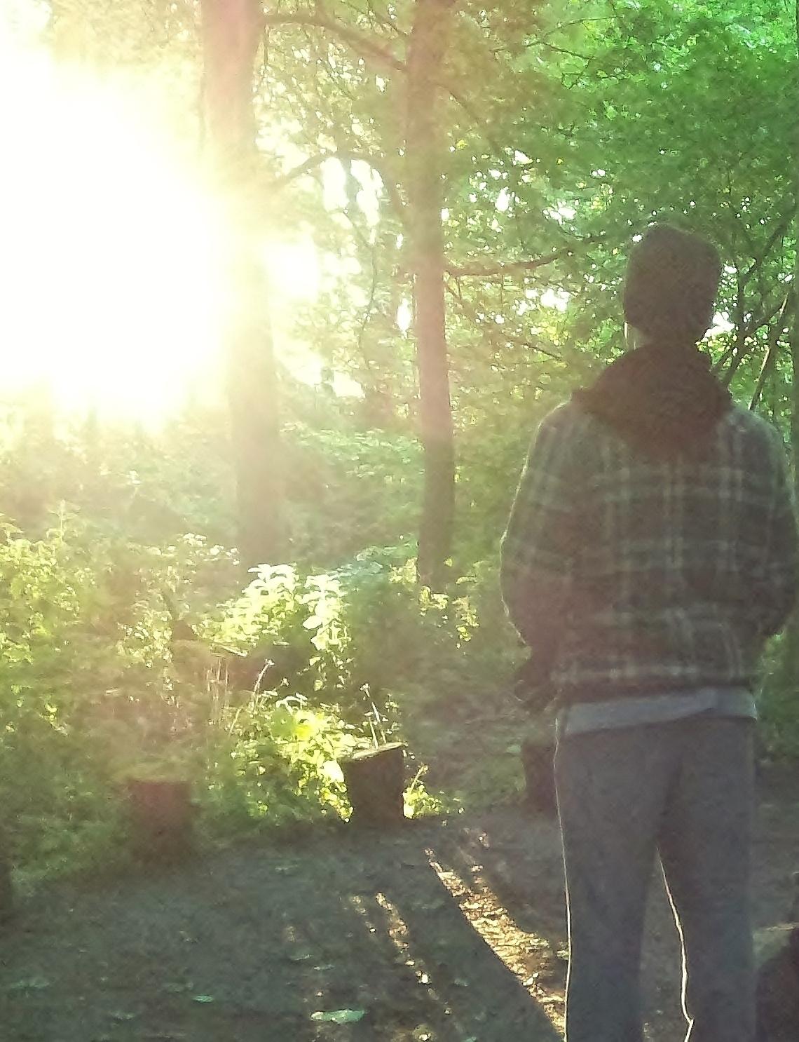sunrise-michael